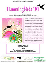 Hummingbirds_101-th